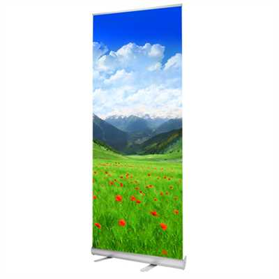 Rollup Banner Bacis